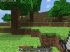 Minecraft! (Gasp)