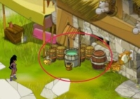 Barrels and crates in Dofus