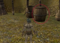 Barrels and crates in Shaiya
